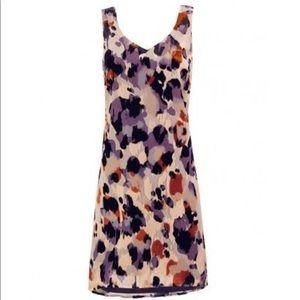 CAbi fall dress